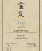 Reiki™ 1